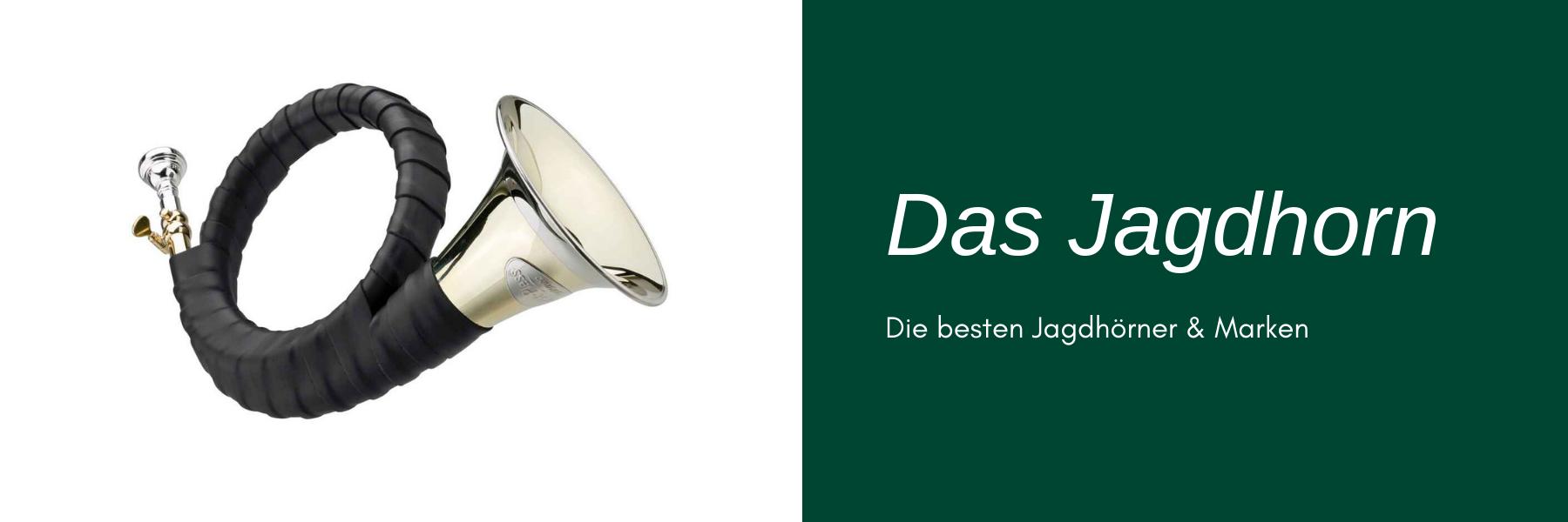 Jagdhorn kaufen - die besten Jagdhörner & Marken