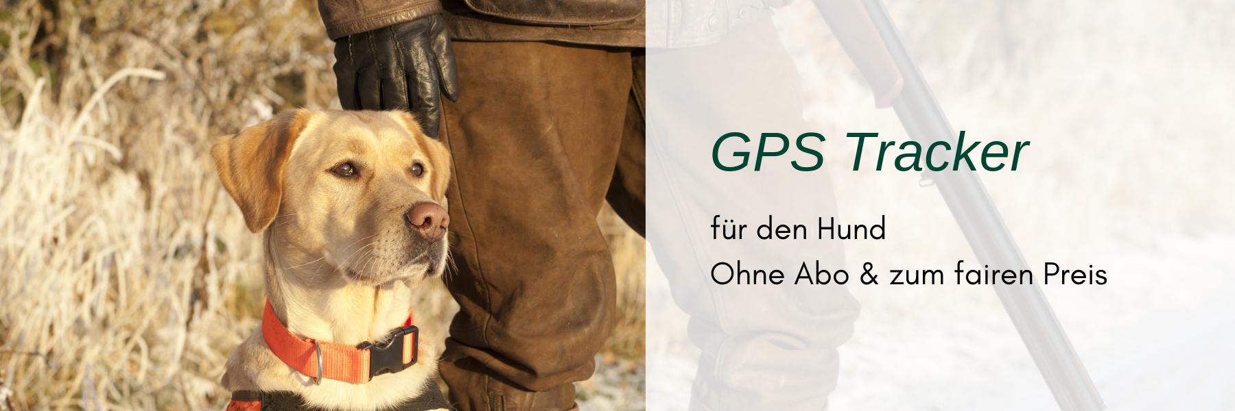 GPS Tracker für den Hund - ohne Abo und zum fairen Preis