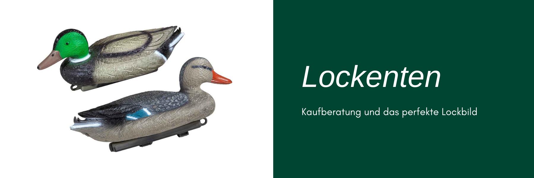 Lockenten - Kaufberatung & das perfekte Lockbild