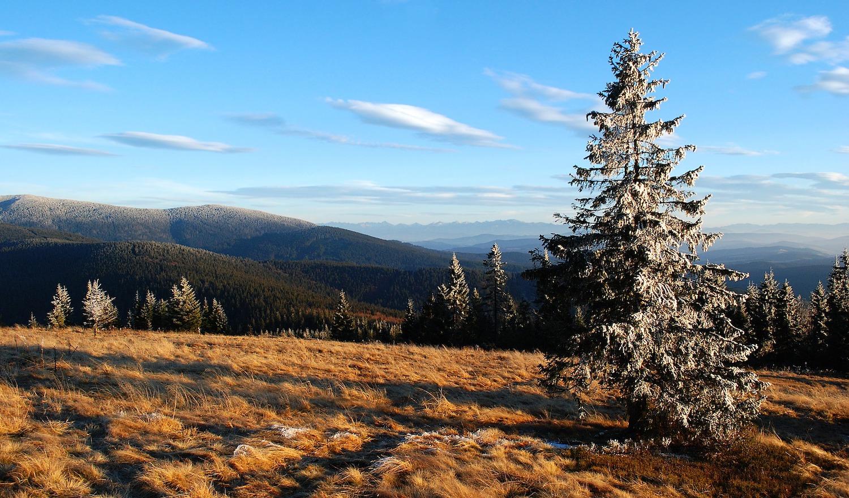 Jagdreisen nach Polen: Die wunderschönen Beskiden